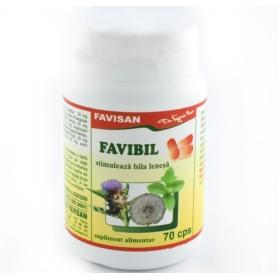 Favibil remediu in stimularea secretiei biliare a ficatului 70 capsule Favisan