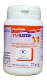 favilutein-cps-custom-_9819